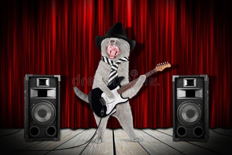 Γάτα αστέρων της ροκ στοκ φωτογραφία