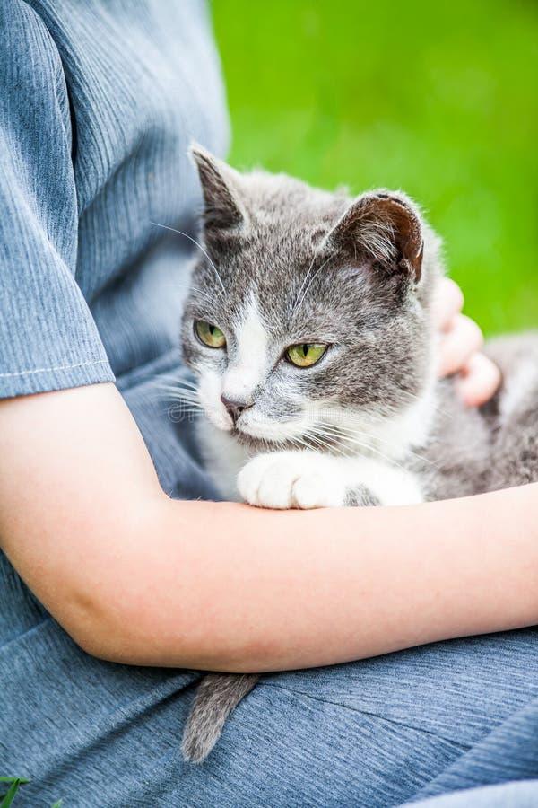 Γάτα εκμετάλλευσης κοριτσιών στοκ εικόνες