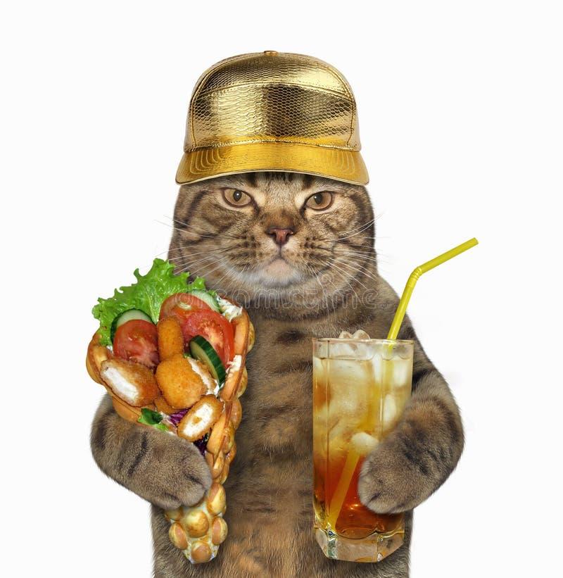 Γάτα με τις βάφλες και το κρύο τσάι στοκ φωτογραφίες με δικαίωμα ελεύθερης χρήσης