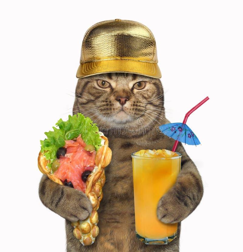 Γάτα με τις μαλακούς βάφλες και το χυμό στοκ εικόνα