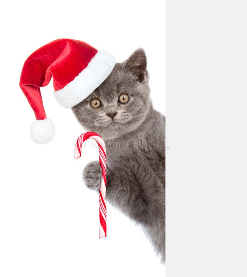 Γάτα με τον κάλαμο καραμελών Χριστουγέννων στο κόκκινο καπέλο santa που κρυφοκοιτάζει από πίσω από τον κενό πίνακα και που εξετάζ στοκ εικόνες