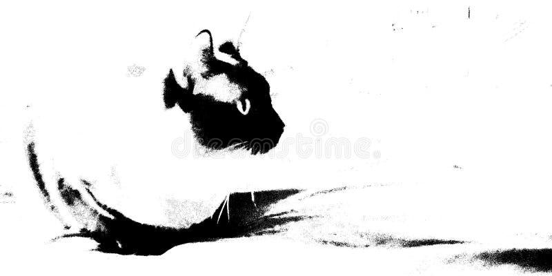Γάτα με το αυτί που ανατρέχει στο δικαίωμα στοκ φωτογραφία