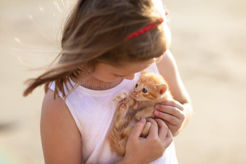 Γάτα μωρών εκμετάλλευσης μικρών κοριτσιών Παιδιά και κατοικίδια ζώα στοκ εικόνα