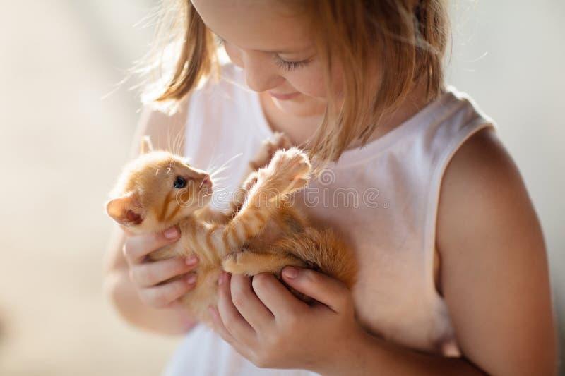Γάτα μωρών εκμετάλλευσης μικρών κοριτσιών Παιδιά και κατοικίδια ζώα στοκ εικόνες με δικαίωμα ελεύθερης χρήσης
