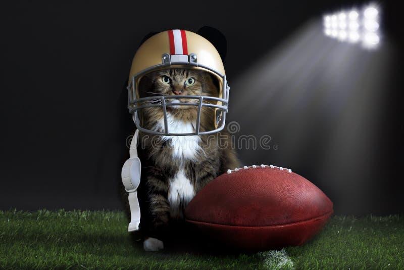 Γάτα που φορά το κράνος ποδοσφαίρου στο αγωνιστικό χώρο στοκ φωτογραφία