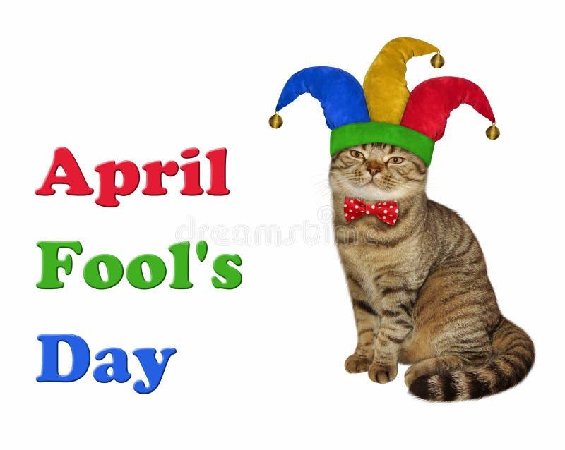 Γάτα σε ένα jester καπέλο και έναν δεσμό τόξων στοκ φωτογραφία με δικαίωμα ελεύθερης χρήσης