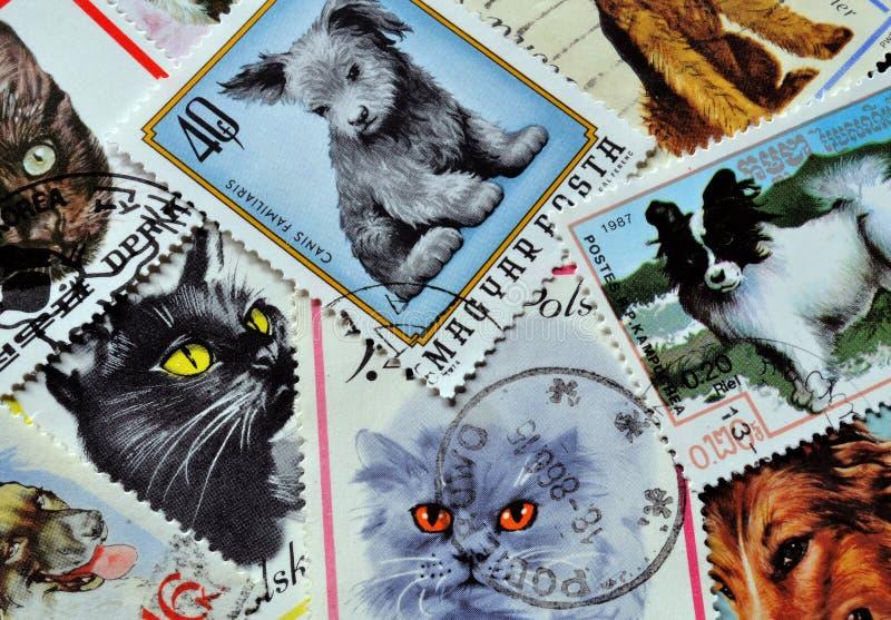 Γάτες και σκυλιά στα γραμματόσημα στοκ εικόνες