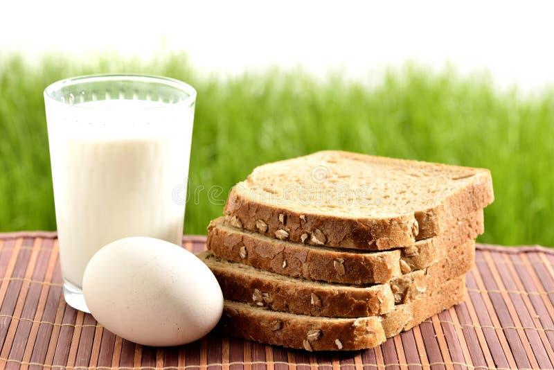 Γάλα και αυγό με το ψωμί στοκ εικόνα