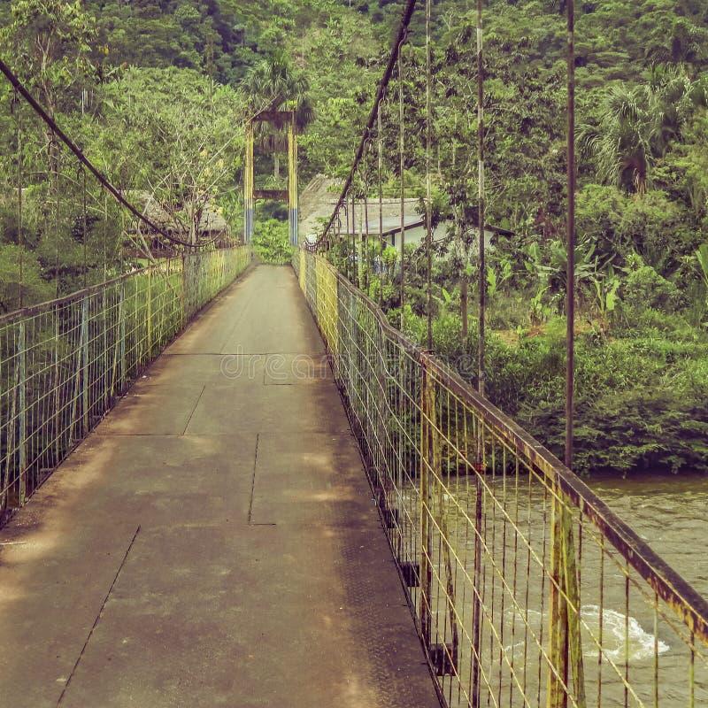 Γέφυρα Αμαζονία Ισημερινός στοκ φωτογραφίες με δικαίωμα ελεύθερης χρήσης