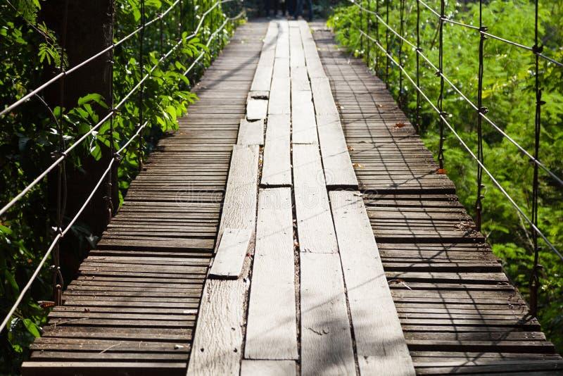 Γέφυρα αναστολής φιαγμένη από ξύλο στοκ εικόνα