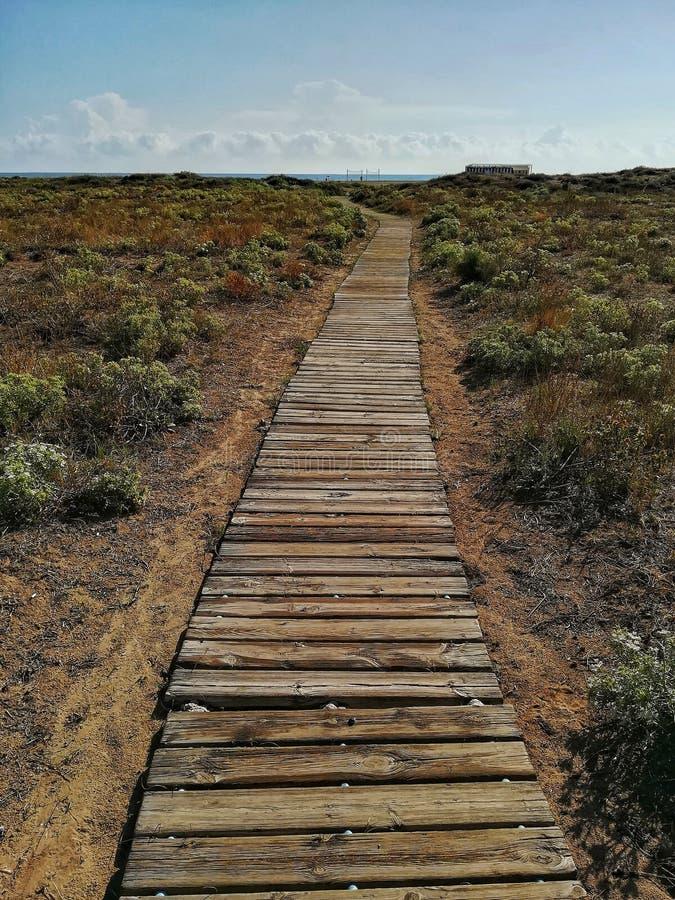 Γέφυρα για πεζούς στην παραλία στοκ εικόνες