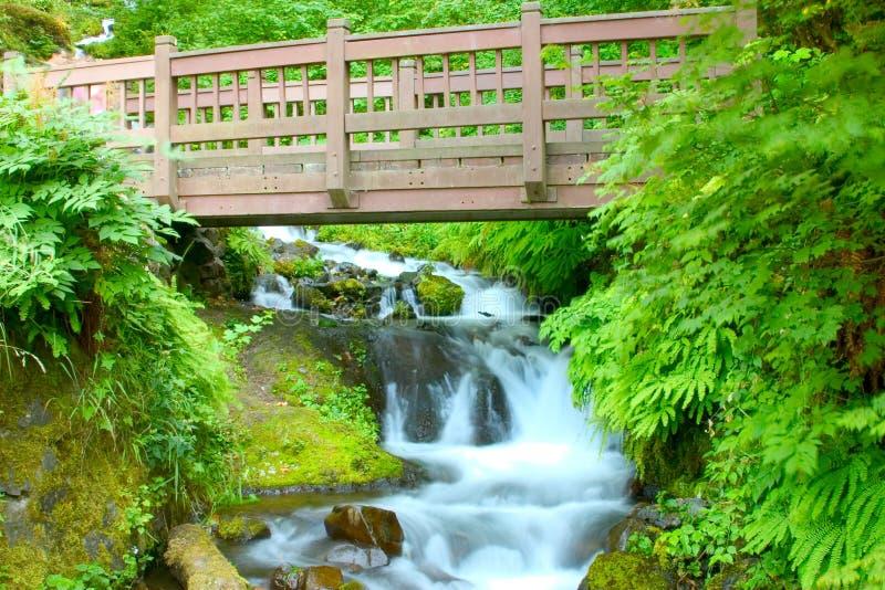 γέφυρα για πεζούς στοκ εικόνες με δικαίωμα ελεύθερης χρήσης