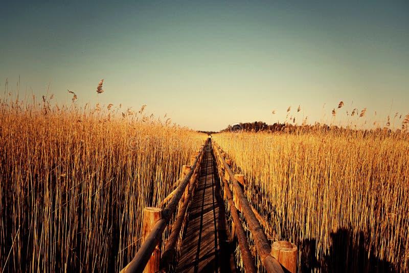Γέφυρα για πεζούς Kanieris στοκ φωτογραφίες