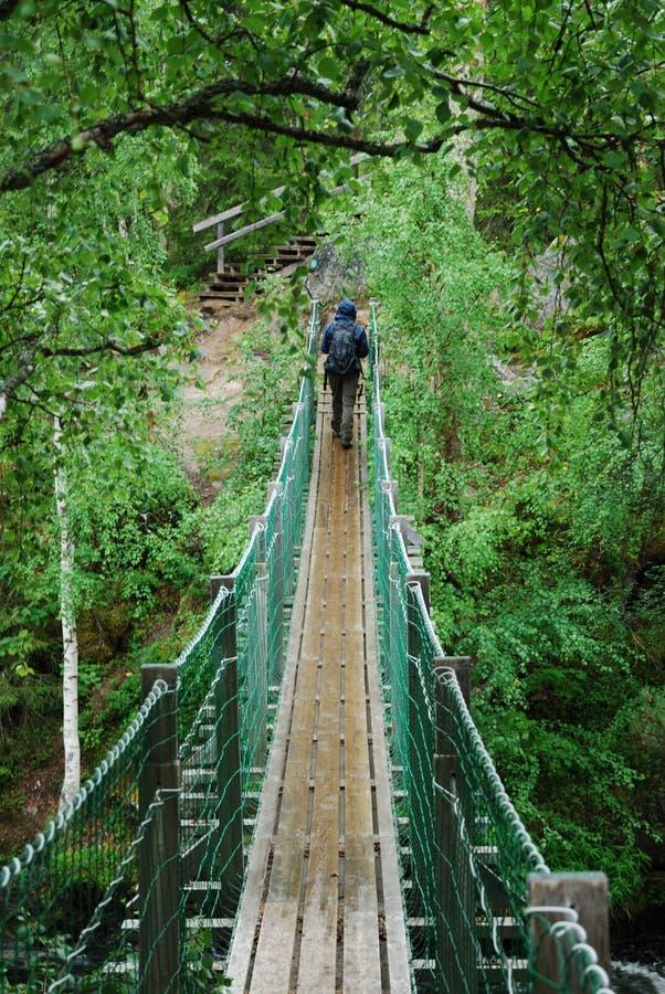 Γέφυρα κρεμαστών κοσμημάτων στο εθνικό πάρκο Oulanka. στοκ εικόνα