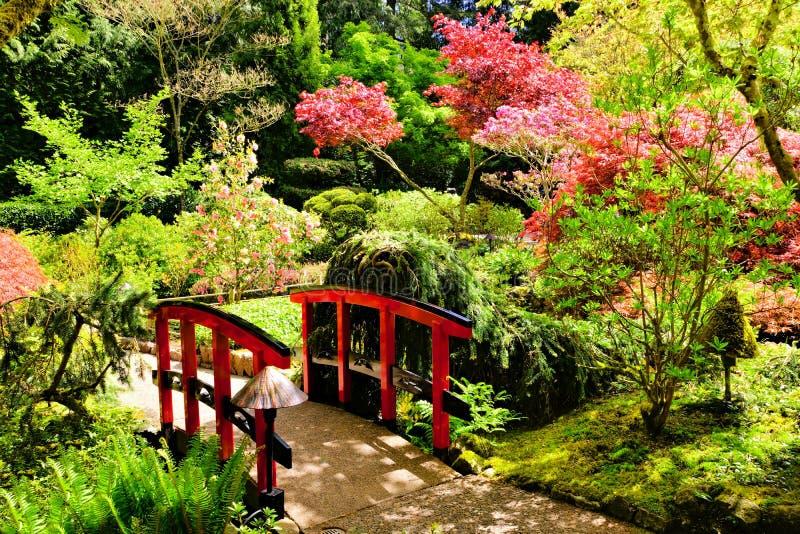 Γέφυρα μέσω των όμορφων ιαπωνικών κήπων στοκ φωτογραφία με δικαίωμα ελεύθερης χρήσης