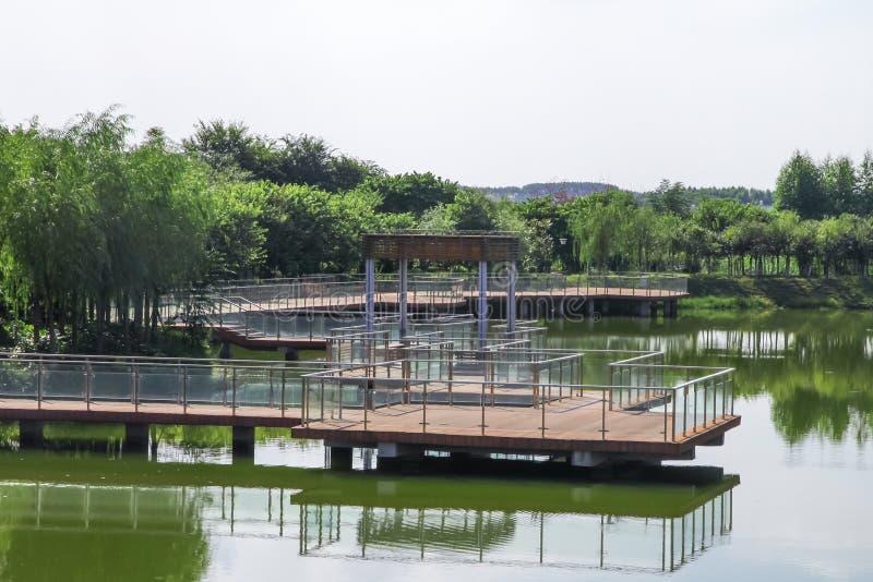Γέφυρα ξυλείας στο νερό στοκ εικόνες με δικαίωμα ελεύθερης χρήσης