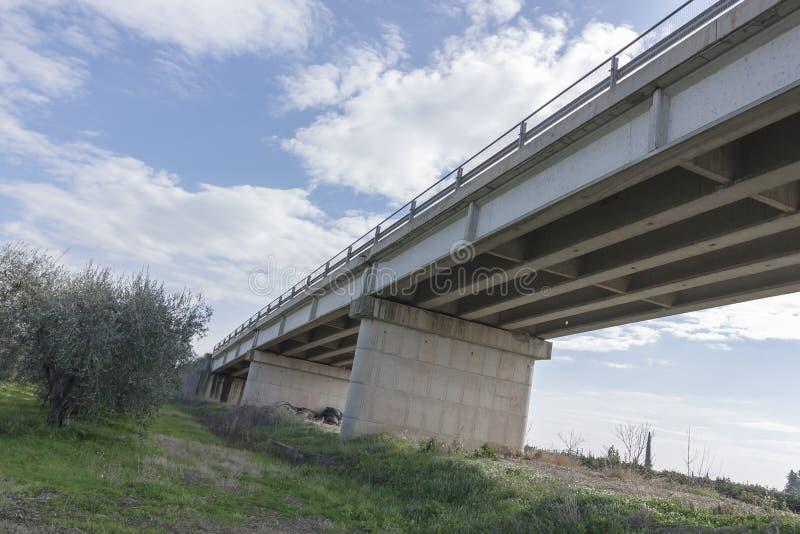 Γέφυρα που αγνοεί έναν τομέα ελιών και στο εναλλασσόμενο ρεύμα υποβάθρου στοκ φωτογραφίες με δικαίωμα ελεύθερης χρήσης