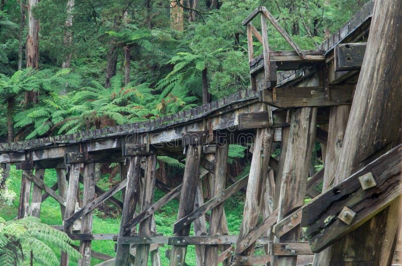Γέφυρα σιδηροδρόμων τρίποδων ξυλείας στις σειρές Dandenong στοκ εικόνες