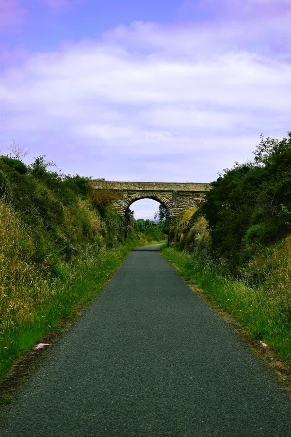 Γέφυρα στο δρόμο φύσης στοκ εικόνες