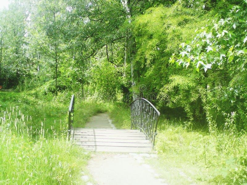 Γέφυρα στο πάρκο στοκ εικόνα