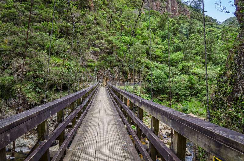 Γέφυρα στο φαράγγι Karanghake στοκ εικόνες