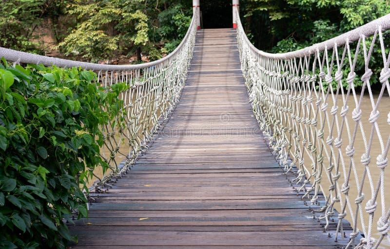Γέφυρα σχοινιών στοκ φωτογραφία με δικαίωμα ελεύθερης χρήσης