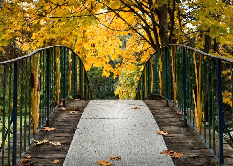 Γέφυρα φθινοπώρου στα δέντρα στοκ φωτογραφία