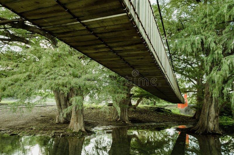 Γέφυρα φιαγμένη ξύλινο φτερό που βλέπει από από κάτω από στοκ εικόνες με δικαίωμα ελεύθερης χρήσης