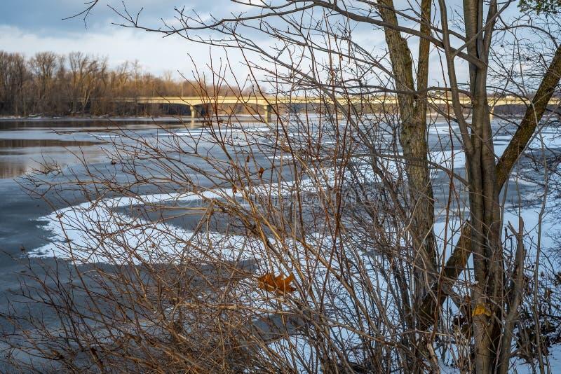 Γέφυρα Gédéon-Ouimet μέσω των κλάδων στοκ εικόνες