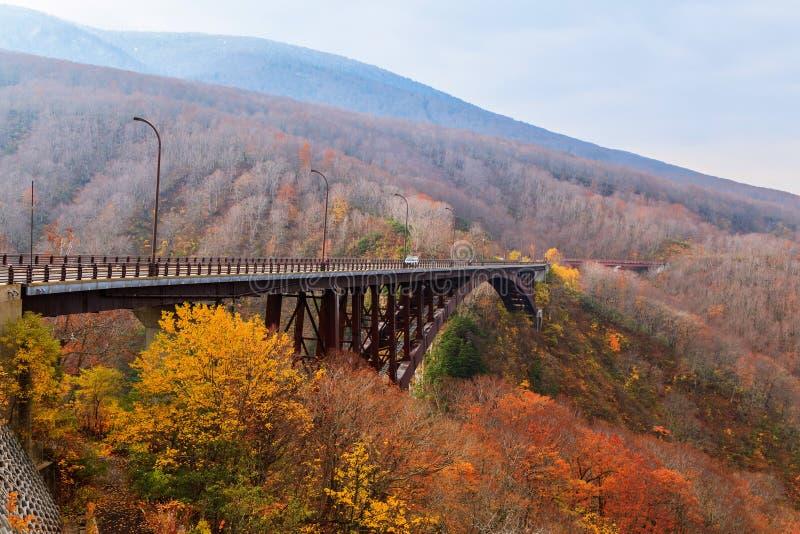 Γέφυρα Jogakura άποψης και ζωηρόχρωμο βουνό στην εποχή φθινοπώρου, AO στοκ φωτογραφία με δικαίωμα ελεύθερης χρήσης