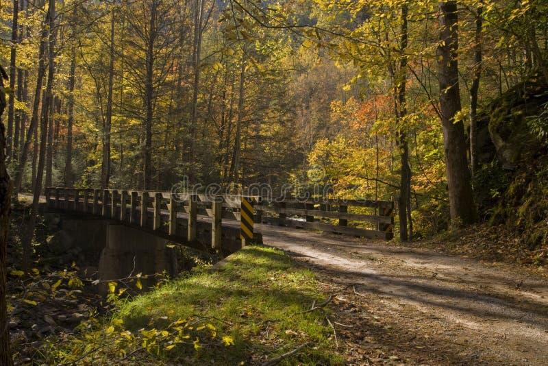 γέφυρα NP φθινοπώρου smokies tremont στοκ εικόνα με δικαίωμα ελεύθερης χρήσης