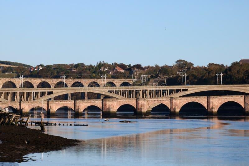 Γέφυρες πέρα από το τουίντ ποταμών, Berwick, Northumberland στοκ φωτογραφία με δικαίωμα ελεύθερης χρήσης