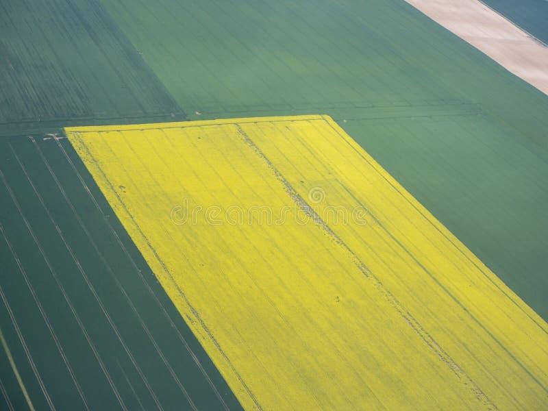 Γήινη γραμμή Μια κάθετη προοπτική των επίγειων χρωμάτων και των μορφών Γεωργικοί τομείς με τα πράσινα και κίτρινα χρώματα στοκ φωτογραφίες
