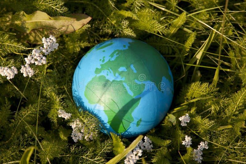 γήινη χλόη πράσινη στοκ εικόνα με δικαίωμα ελεύθερης χρήσης