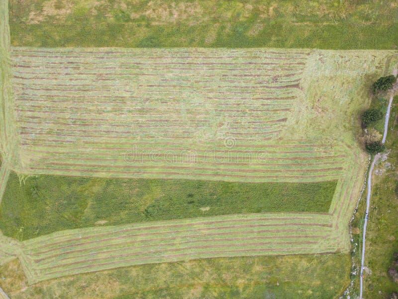 Γήινη ` s γραμμή Μια κάθετη προοπτική κηφήνων των επίγειων ` s χρωμάτων και των μορφών Γεωργική περικοπή τομέων χλόης στοκ φωτογραφία με δικαίωμα ελεύθερης χρήσης