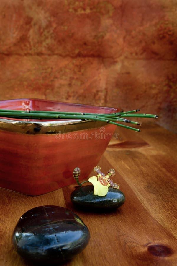 γήινος τόνος zen στοκ εικόνες με δικαίωμα ελεύθερης χρήσης