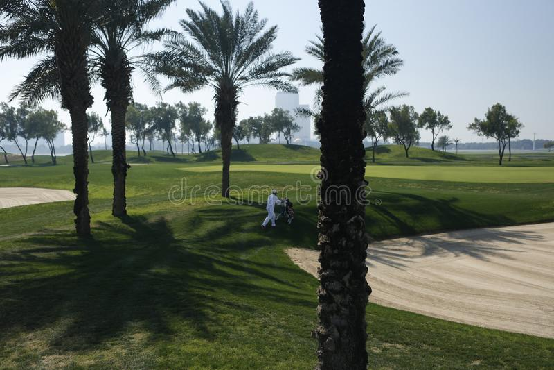 γήπεδο του γκολφ στο Ντουμπάι με τους φοίνικες και ουρανοξύστες στο υπ στοκ εικόνα με δικαίωμα ελεύθερης χρήσης