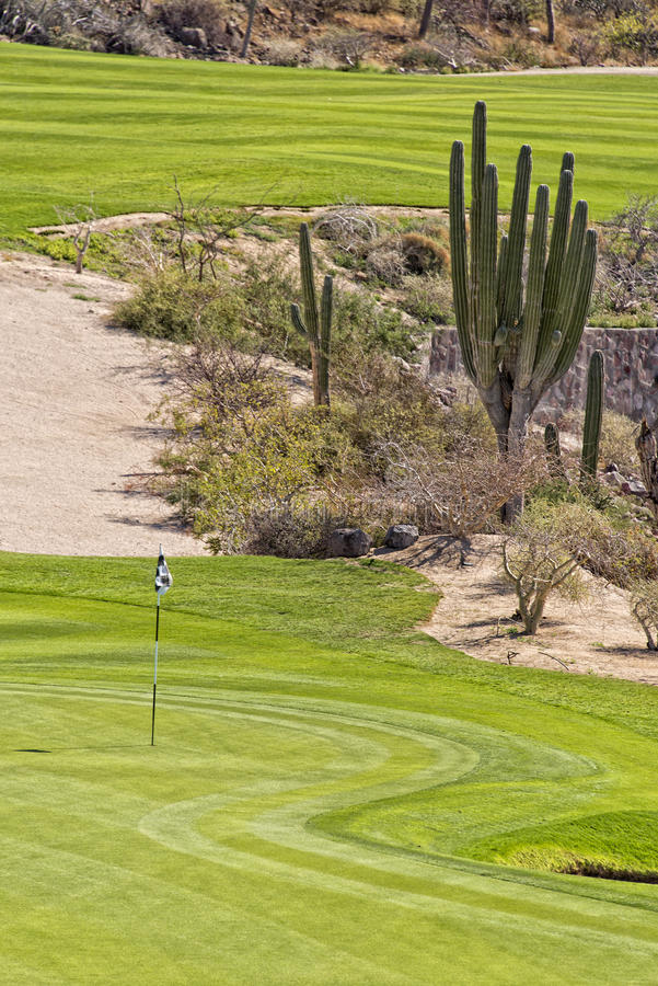 Γήπεδο του γκολφ ερήμων πράσινο στοκ φωτογραφίες