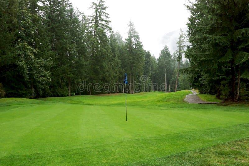 Γήπεδο του γκολφ Golfing στοκ εικόνα
