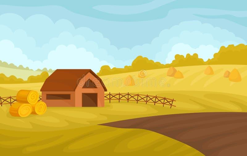 Γαλήνιο αγροτικό τοπίο φθινοπώρου με τη σιταποθήκη και τους κίτρινους τομείς, διανυσματική απεικόνιση γεωργίας και καλλιέργειας σ διανυσματική απεικόνιση