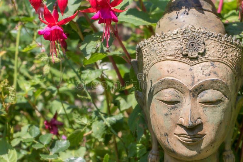 Γαλήνιο πρόσωπο του Βούδα Άγαλμα κήπων με τα λουλούδια fuschia Βουδισμός φύσης στοκ φωτογραφία με δικαίωμα ελεύθερης χρήσης