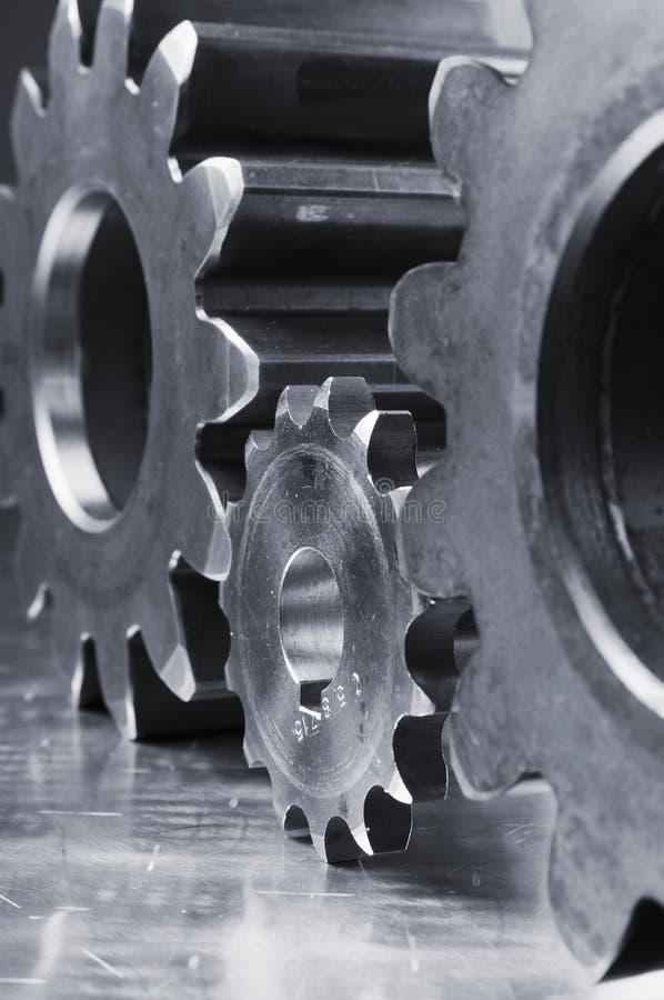 γαλαζωπός χάλυβας θηρι&omicr στοκ εικόνες
