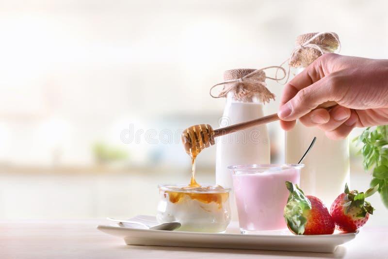Γαλακτοκομείο στην άσπρη κουζίνα και χέρι που κατασκευάζει το μέλι στη στάρπη στοκ εικόνες με δικαίωμα ελεύθερης χρήσης