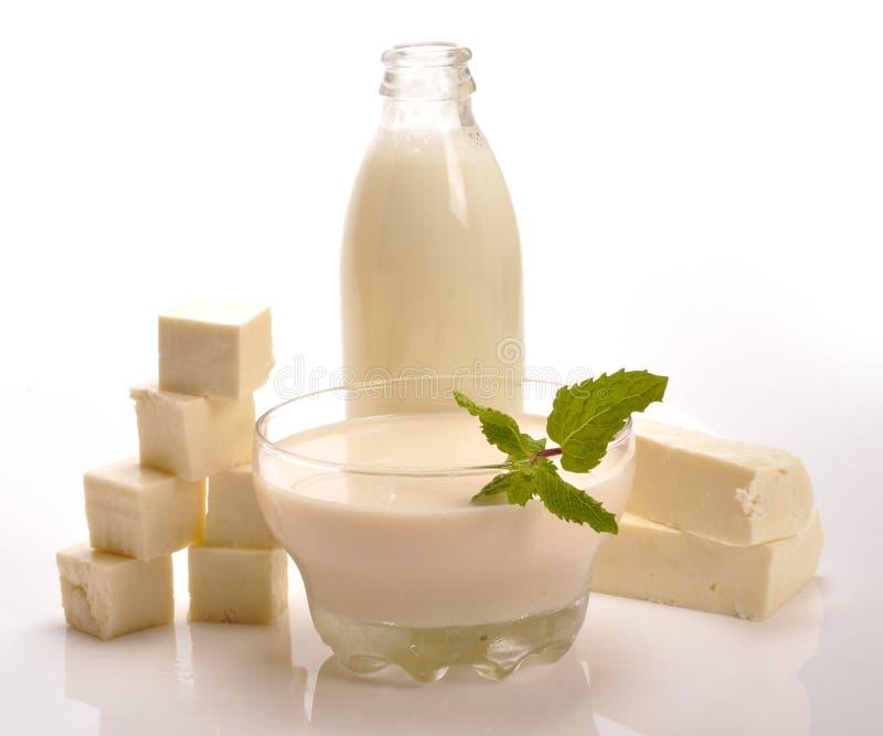 Γαλακτοκομικά προϊόντα στοκ εικόνες με δικαίωμα ελεύθερης χρήσης