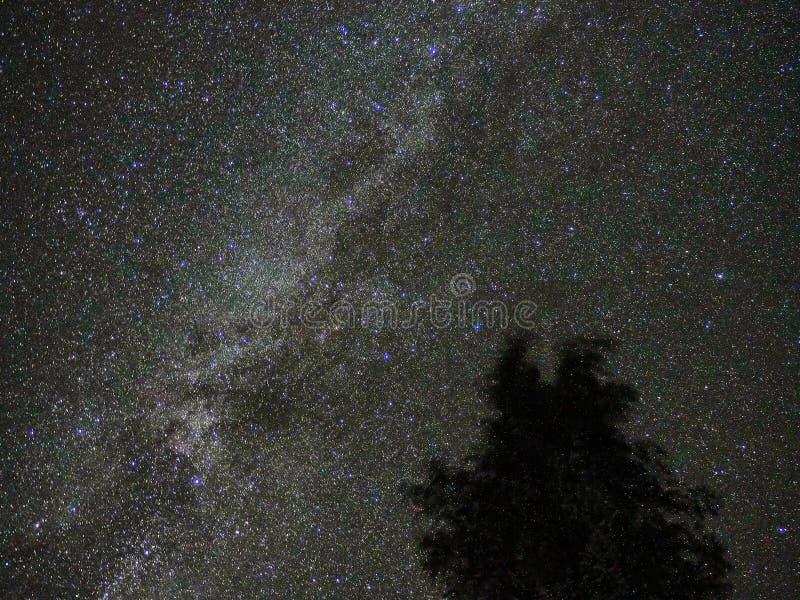 Γαλακτώδης παρατήρηση αστερισμού αστερισμού του Κύκνου αστεριών τρόπων στοκ εικόνα με δικαίωμα ελεύθερης χρήσης