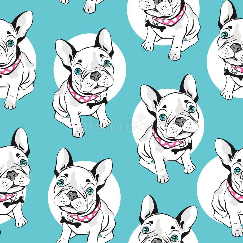 Γαλλικό άνευ ραφής σχέδιο μπουλντόγκ στο άσπρο υπόβαθρο r Συρμένα χέρι αστεία σκυλιά με τα μπλε μάτια απεικόνιση αποθεμάτων