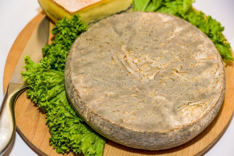Γαλλικό τυρί με τη σαλάτα στοκ εικόνες