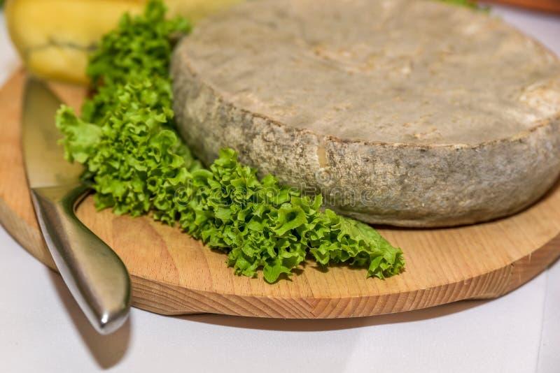 Γαλλικό τυρί με τη σαλάτα στοκ φωτογραφία με δικαίωμα ελεύθερης χρήσης