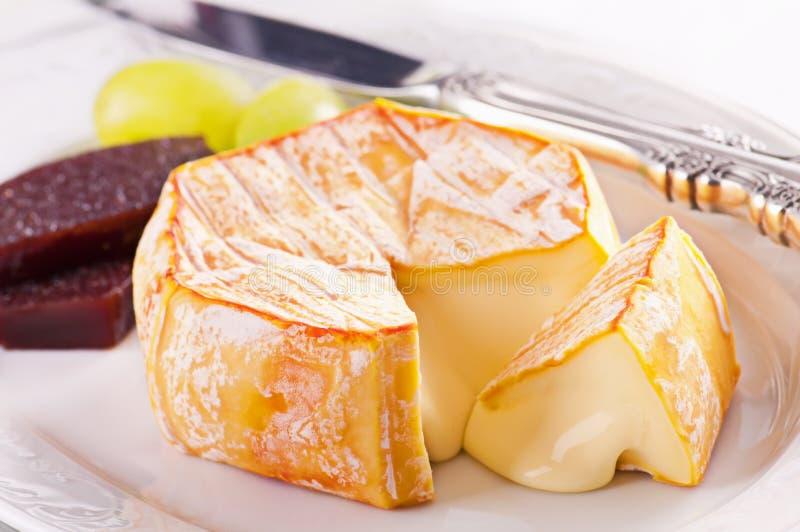 Γαλλικό τυρί στοκ εικόνες με δικαίωμα ελεύθερης χρήσης