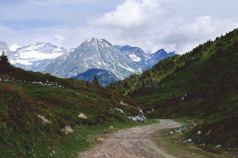 Γαλλικό φυσικό τοπίο Άλπεων Η πορεία που οδηγεί μεταξύ των λιβαδιών βουνών στο μεγάλο βουνό στοκ εικόνες